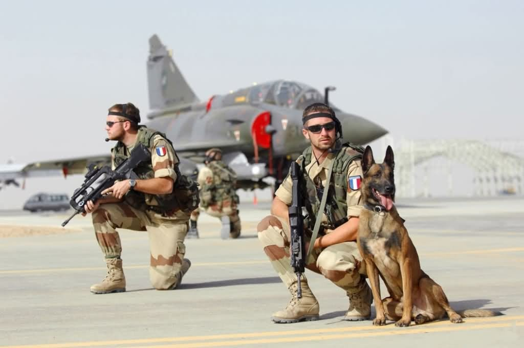 maitre chien armee francaise malinois
